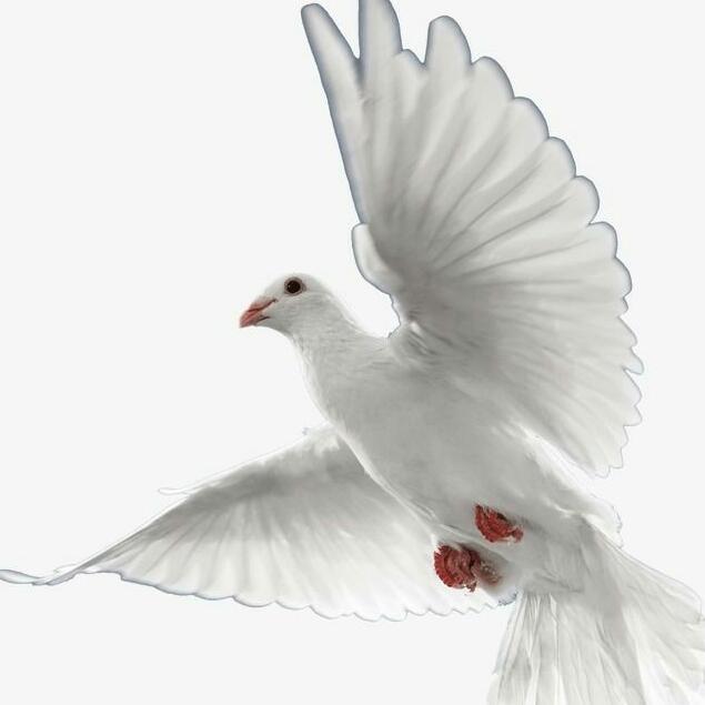 Imagem do grupo O poder de Deus no amor